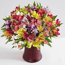 flower arrangements 200 blooms of peruvian lilies