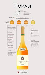 red or white wine for thanksgiving dinner 179 best wine infographics images on pinterest wine education