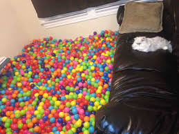 i think reddit will appreciate this my living room ball pit oh