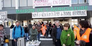 chambre agriculture landes chambre d agriculture des landes grève suivie à 80 sud ouest fr