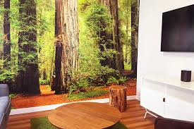 custom wall murals for the office home retail printed in san diego view more what is a wall mural