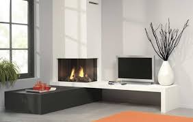 Electric Fireplaces Inserts - electric fireplace insert elegant solution for classy interiors