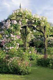 Wedding Arch Ebay Uk Garden Beauty On A Budget Iron Pergola Buxus And Pergolas
