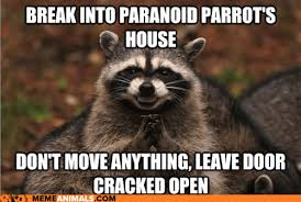 Paranoid Parrot Memes - i can has cheezburger paranoid parrot page 3 funny animals