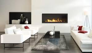 slimline insert bioethanol fireplace beauty fires