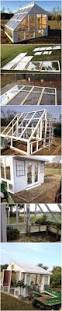 he builds a greenhouse from old windows diy pinterest window