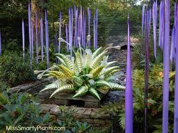 Atlanta Botanical Gardens by Chihuly At Atlanta Botanical Garden Miss Smarty Plants
