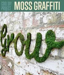 Moss Cleaner For Patios Best 25 Moss Paint Ideas On Pinterest Growing Moss Moss Garden
