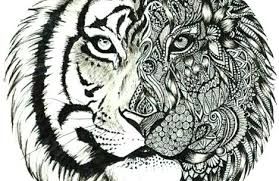 snow tiger coloring page coloring pages of tigers golfclix info