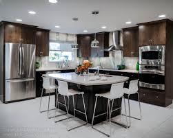 Designer Kitchen Cabinet Hardware Kitchen Cabinet Pulls With Modern Envy Spotlights Top Knobs