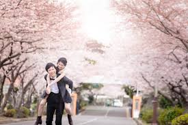 Cherry Blossom Wedding Top Sellers Top Ranked Pre Wedding Package 1 Hellomuse Com