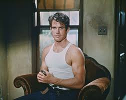 onetime frank sinatra party pad for sale in chatsworth will the real warren beatty please shut up