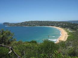 palm beach new south wales wikipedia