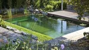 Backyard Swimming Ponds by The Biotop Natural Pools Non Chlorine Alternative Using Plants