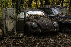 volkswagen racing wallpaper vintage black volkswagen beetle near car covered with dried leafs
