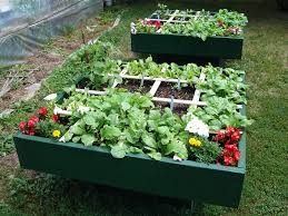 square foot gardening trellis ideas 16 fascinating square foot