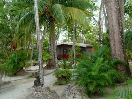 nirvana on the beach a short barefoot homeaway negril