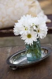 11 best daisy images on pinterest daisies flowers and posts