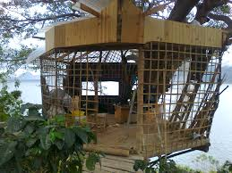Treehouse Examples Treehouses Natural Building Forum At Permies