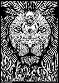 158 lions images coloring books