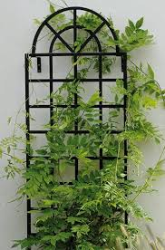 trellis christchurch 91 best garden trellis arbor images on pinterest garden trellis