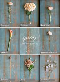 wedding flowers guide 25 best seasonal wedding flower guide ideas on