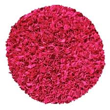 Raspberry Pink Rug Chenille Pink Shag Rug 5 U0027 Round Free Shipping Today