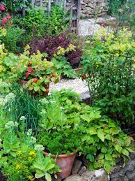 Types Of Community Gardens - plants for an edible garden types of fruits vegetables and