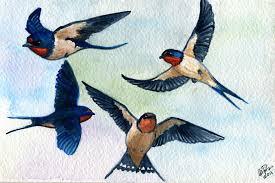 Barn Swallow Tattoo Designs Swallow Art Images Reverse Search