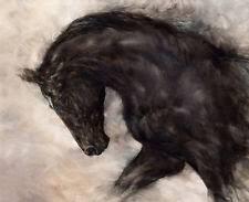 horse canvas ebay