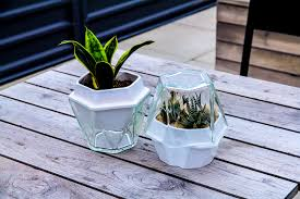 Self Watering Planter by The Patch Is A Self Watering Planter For Herbs And Greens The