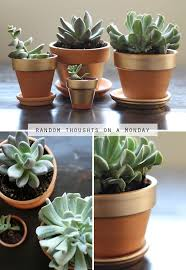 best 25 painting terracotta pots ideas on pinterest terracotta