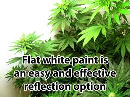 light reflecting paint for walls pinotharvest com