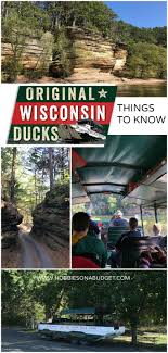 Wisconsin wildlife tours images Best 25 wisconsin dells ideas wisconsin dells jpg