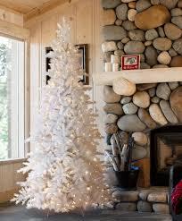arctic white pine tree tree classics