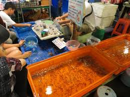 ornamental fish business images