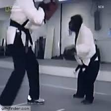 imagenes gif karate karate chimp kicks gif finder find and share funny animated gifs