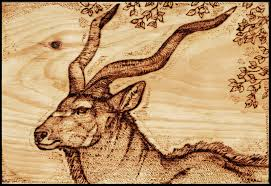 burn on wood bull kudu wood burning by morrokko on deviantart