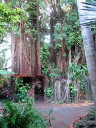 Largo Botanical Garden Key West Botanical Garden Florida