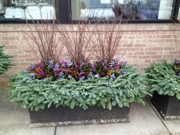 Winter Container Garden Ideas 177 Best Winter Containers Images On Pinterest Winter Planter