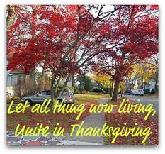 thanksgiving calendar of events for westchester ny westchester