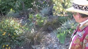 wind dancer garden virtual tour dry creek bed youtube