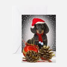 dachshund christmas greeting cards cafepress