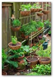 Herb Container Garden - container garden pictures and ideas