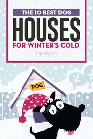 top 10 best dog house for winter choices in 2017 insulated houses