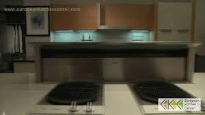 modern kitchens of syracuse kitchen remodel exellent modern kitchen ny design nyc n intended