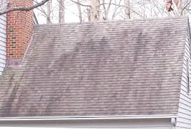 Mallard Roof Cleaning by Roof Stains U0026 Photograph Of Black Algae Growth On Roof Shingles C