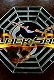 black sash black sash tv series 2003 imdb