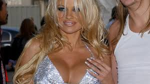 Pamela Anderson shows off her famous assets at LA animal charity