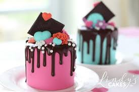 small cake mini cakes to inspired you by best selling author and cake